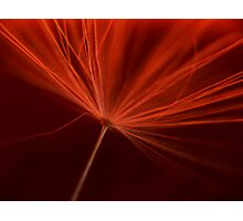 Charged in Red One Photographic Print