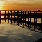 The Outer Banks of North Carolina by NikonJohn