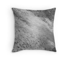 IR#2 Throw Pillow
