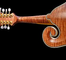 Mellifluous Mandolin © by jansnow