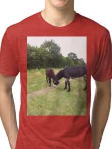 Donkey Tri-blend T-Shirt