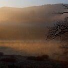 Morning by citrineblue