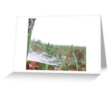 The Web Greeting Card
