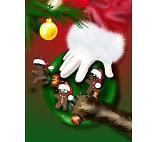 Cookies for Santa Photographic Print