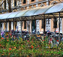 Cycling  by oreundici