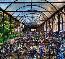 Parking of bicycles by oreundici