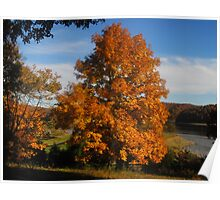 October at the Lake I Poster
