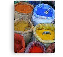 Bags With colorfull pigments Canvas Print