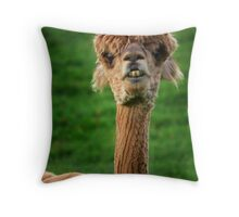 Alpacas Throw Pillow