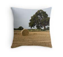 Round Hay Bale near Werribee Throw Pillow