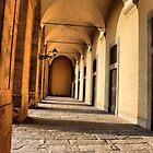 Palazzo Pitti by andreisky
