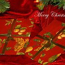 Uopened Gifts - Blog  by artsthrufotos