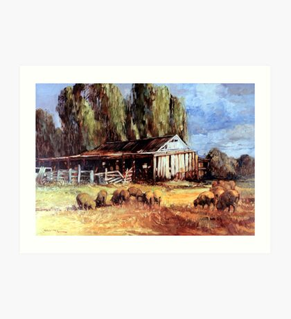 Old Slab Yards and Sheep - Australian Rural Scene  Art Print