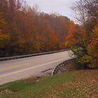 Autumn on the Highway by Virginia Shutters