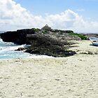 Caribbian Shore Line by Rosalie Scanlon