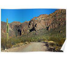 The Beauty of the Desert Poster