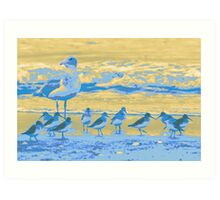 Shore Birds Art Print