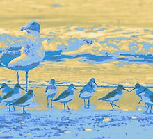 Shore Birds by Jillian Johnston