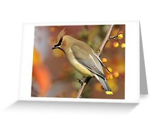 Wild Berry Blend #2 Greeting Card
