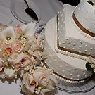 cakes and cakes by robyn delorme