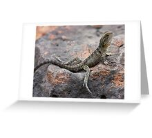 Physignathus lesueurii Greeting Card