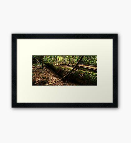 The Brush Framed Print
