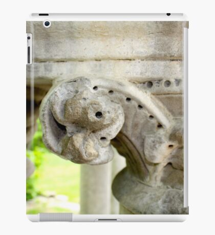 Column Topper iPad Case/Skin