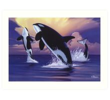 Killer Whales Art Print