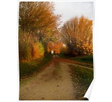 The Lane in Autumn Poster