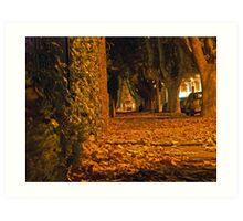 Autumn night in Elwood Art Print