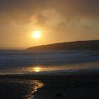 Always the sun by Mitch  McFarlane