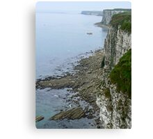Coastal View Canvas Print