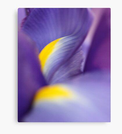 Revealing Her Inner Beauty - Purple Iris Canvas Print
