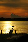 Islamorada Sunset by JKKimball