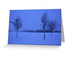 Snowy Countryside Greeting Card