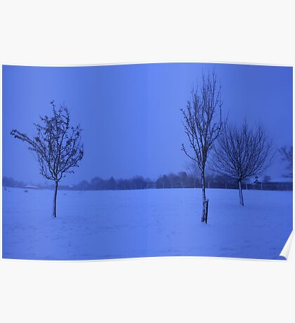 Snowy Countryside Poster