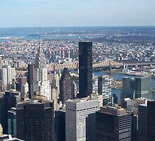 New York City by solitaire
