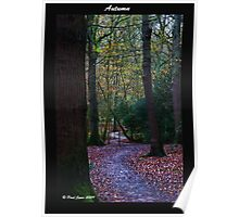 Autumn in the Eccelsall woods Poster