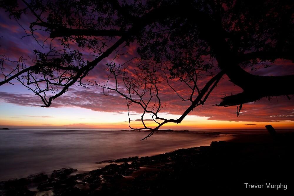 Setting sun at high tide by Trevor Murphy