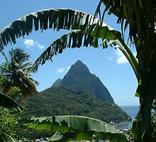 Piton Mountains in St. Lucia, West Indies by DianeBUhlman