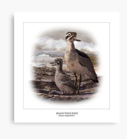 BEACH THICK-KNEE #3 Canvas Print