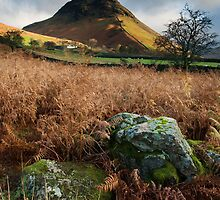 YEWBARROW by STEVE  BOOTE