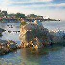 Pacific Grove by Leroy Laverman