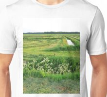 an unbelievable Netherlands