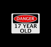DANGER 17 YEAR OLD, FAKE FUNNY BIRTHDAY SAFETY SIGN by DangerSigns