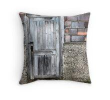 The Cellar Door Throw Pillow