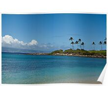 A day at the beach in Maui, HI Poster