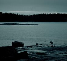 three bids on a rainy islet by jelias09