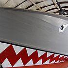 PT Boat by Steven Squizzero