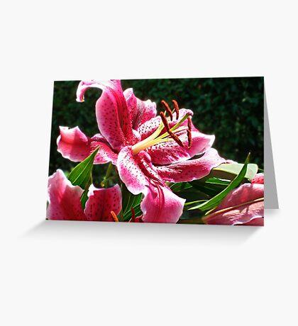 Lifeline Lily Greeting Card